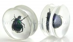 Акриловые плаги с жуком