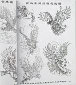 Птицы.Эскизы и фото.43 страницы.Китай.